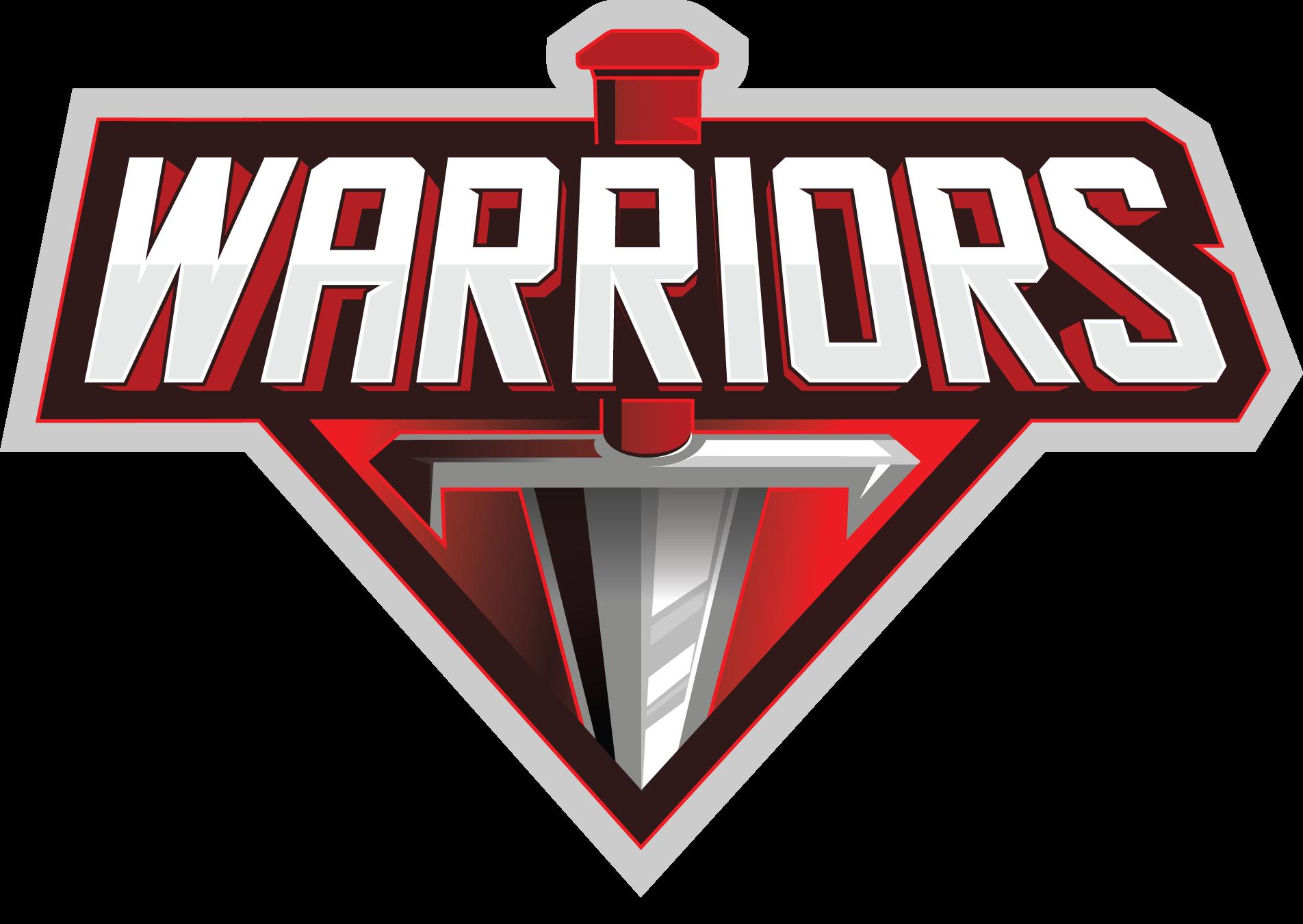 Shotmakers Golf Channel Gm 3800 Standalone Wiring Harness Team Warriors